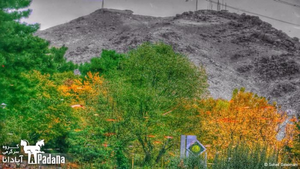 عکس پاییزی پارک جمشیدیه